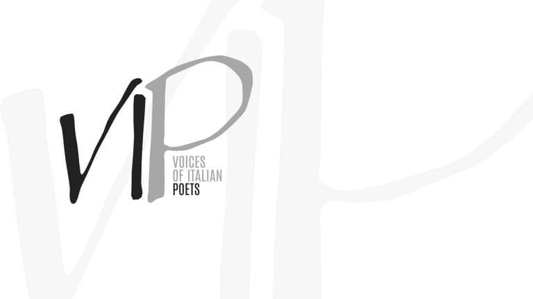 XV Convegno AISV